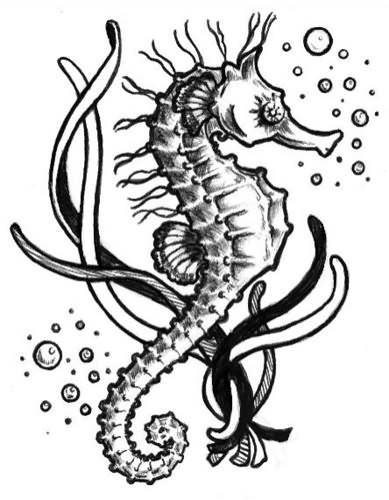 Simple Bubbles Seahorse Tattoo Design Stencil