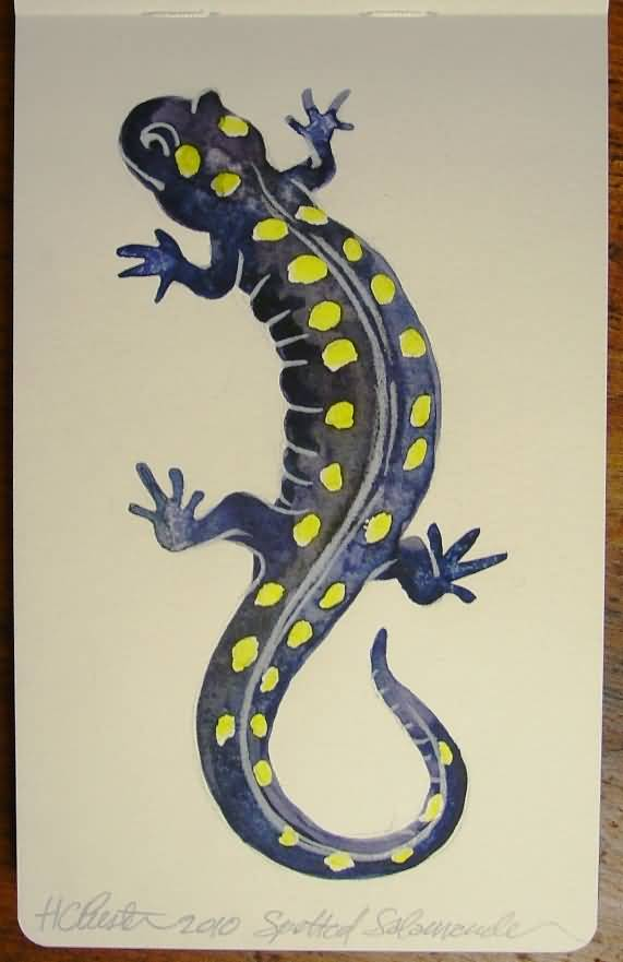 Simple Salamander Lizard Tattoo Design Stencil