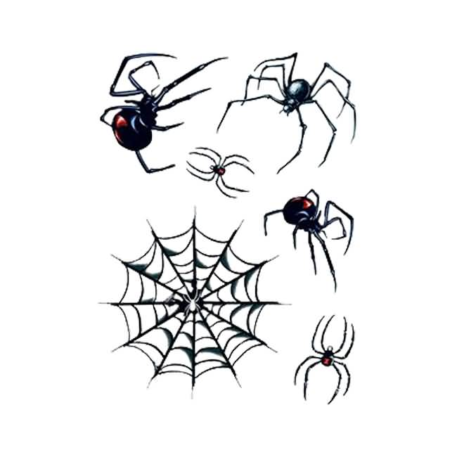 Spider Web With Amazing Black Widows Tattoo On Paper