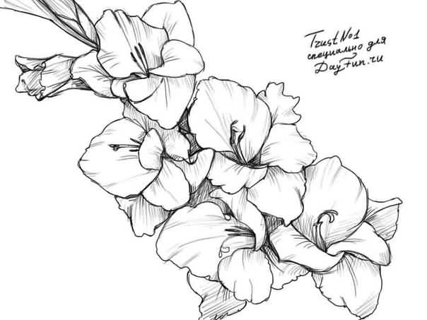 White Ink Nice Gladiolus Flower Tattoo Stencil