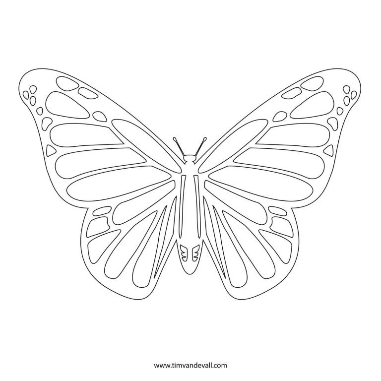 White Nice Moinarch Butterfly Stencil Tattoo Design