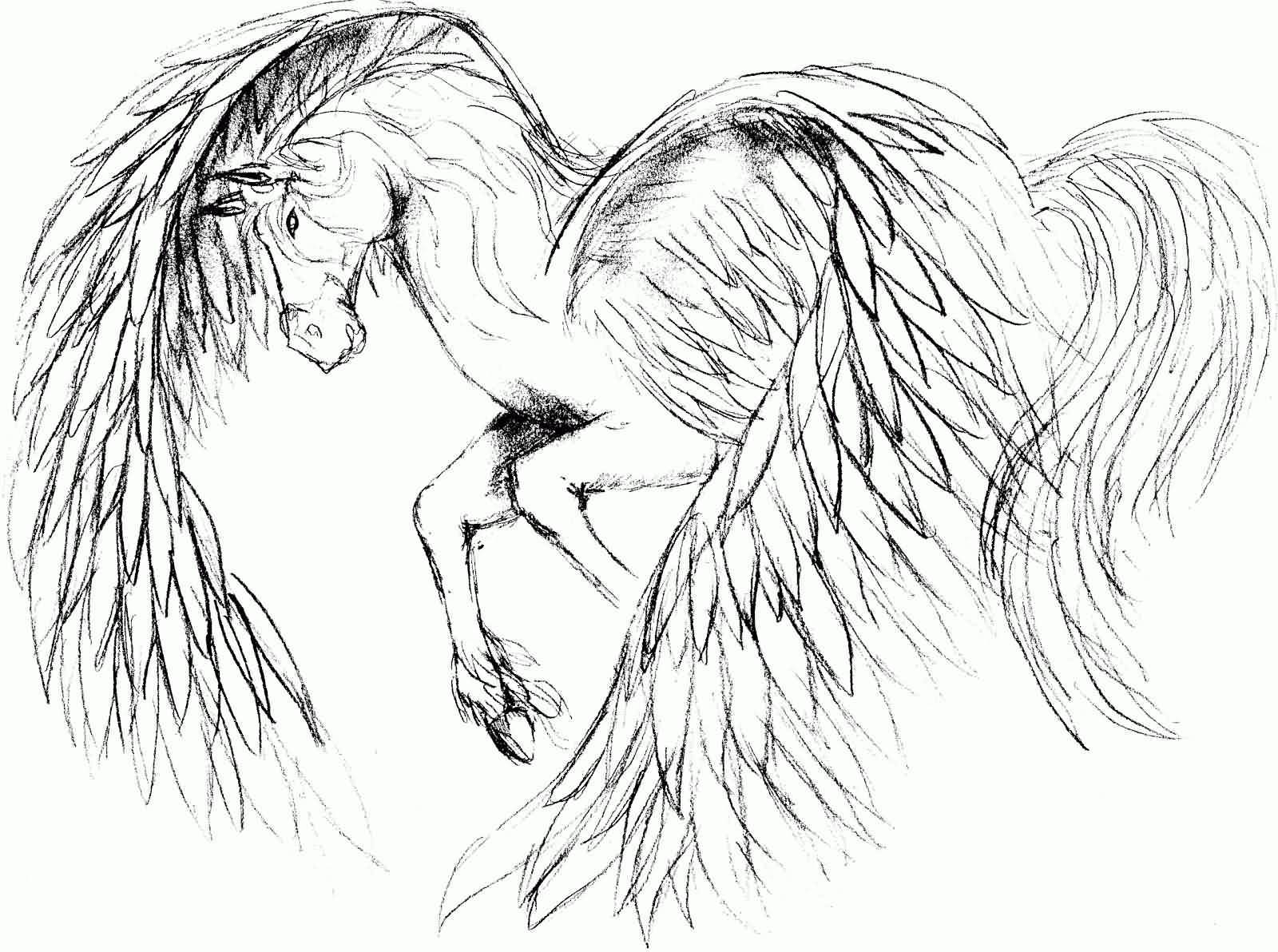 Wonderful Pegasus Tattoo Design Stencil
