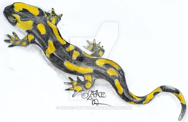 Yellow And Dark Grey Ink Salamander Tattoo Design