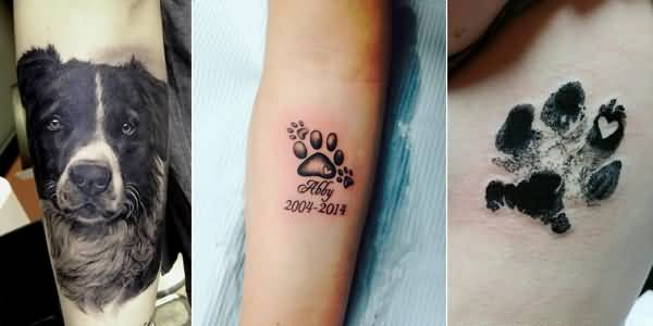 Nice Remembrance Dog Portrait Face And Paw Tattoo