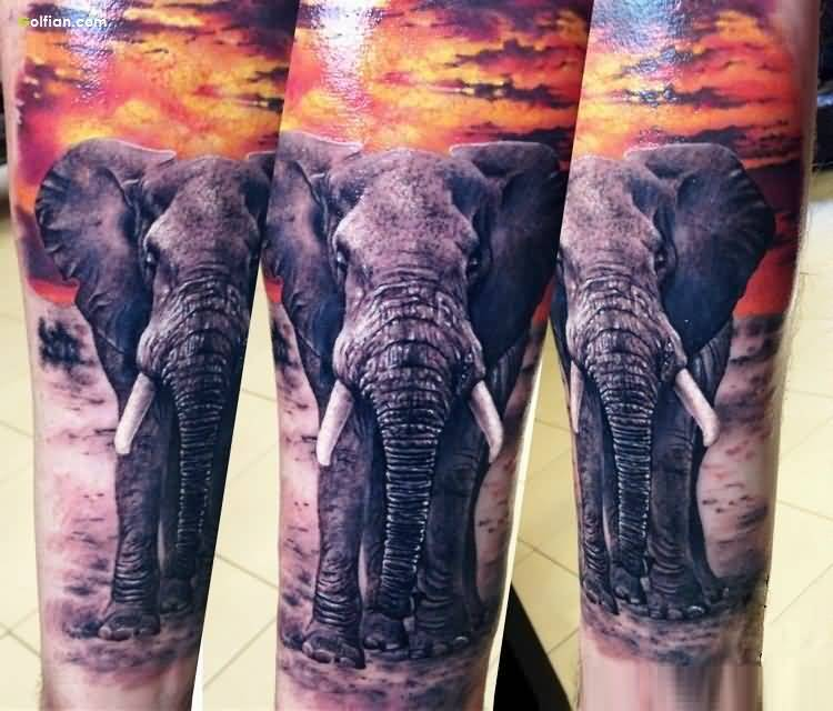 Real Elephant African Tattoo